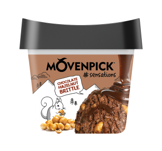 MÖVENPICK #sensations Chocolate Hazelnut Brittle 16 x 165ml